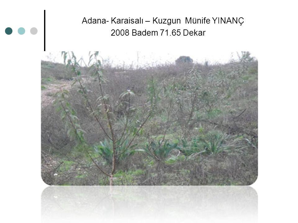 Adana- Karaisalı – Kuzgun Münife YINANÇ 2008 Badem 71.65 Dekar