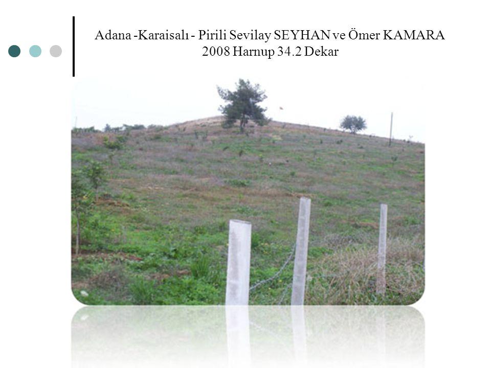 Adana -Karaisalı - Pirili Sevilay SEYHAN ve Ömer KAMARA 2008 Harnup 34