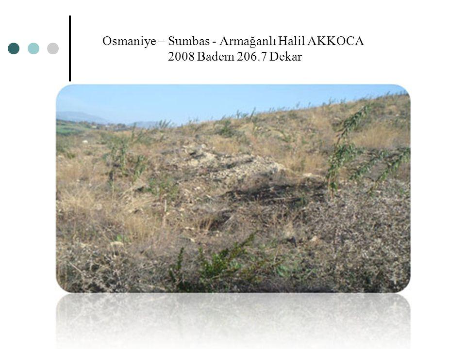 Osmaniye – Sumbas - Armağanlı Halil AKKOCA 2008 Badem 206.7 Dekar