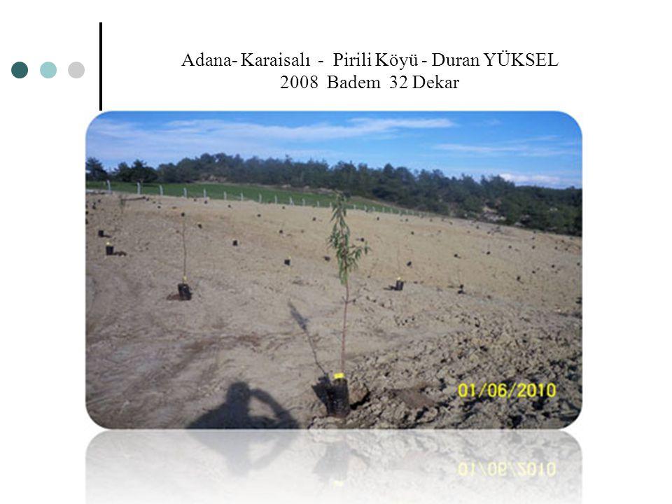 Adana- Karaisalı - Pirili Köyü - Duran YÜKSEL 2008 Badem 32 Dekar
