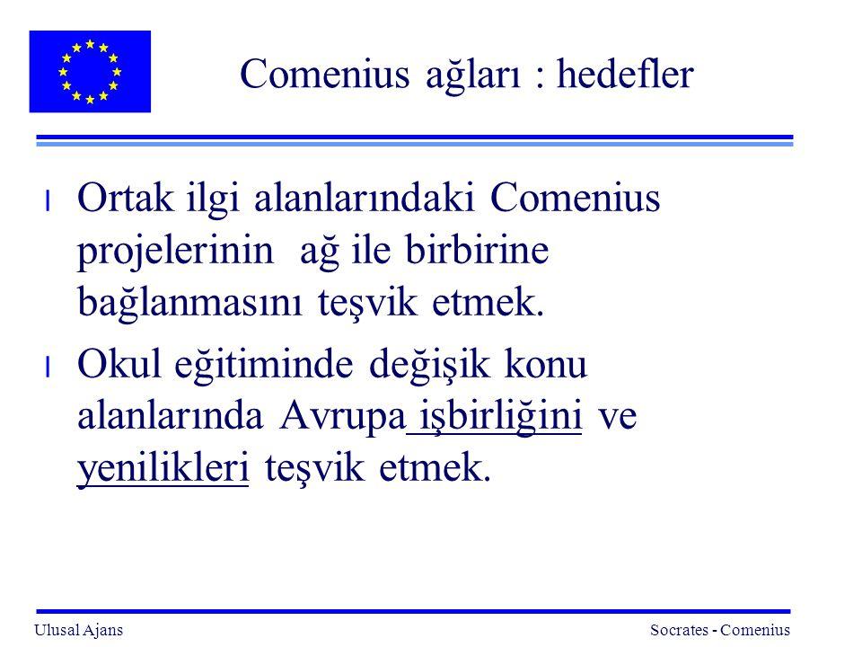 Comenius ağları : hedefler