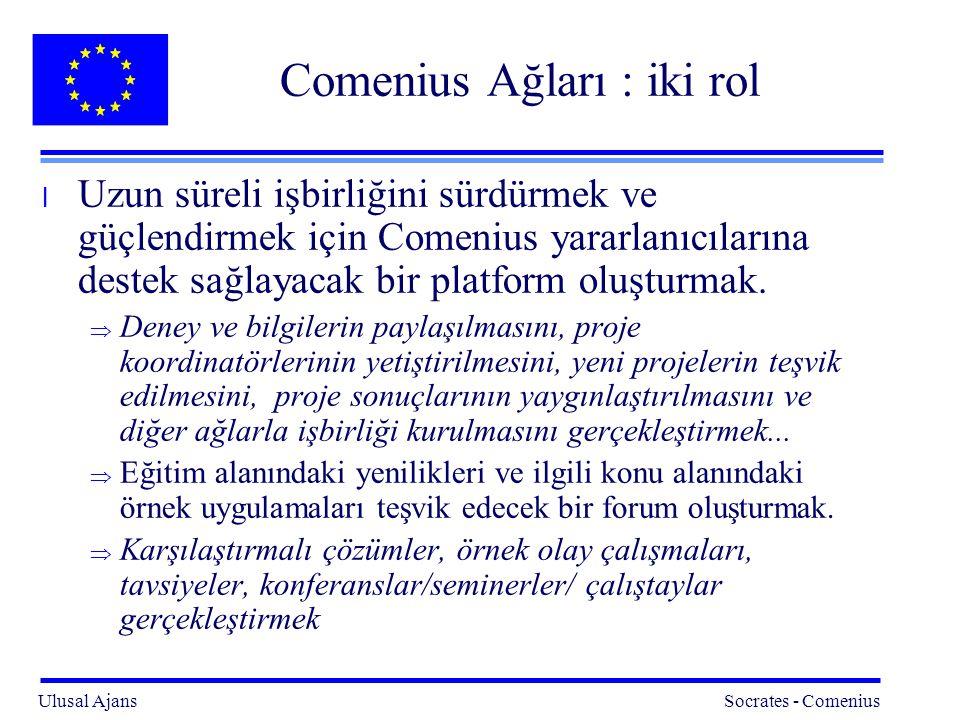 Comenius Ağları : iki rol