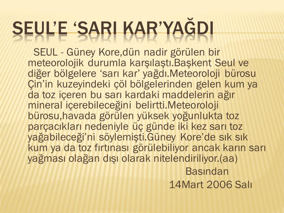 SEUL'E 'SARI KAR'YAĞDI