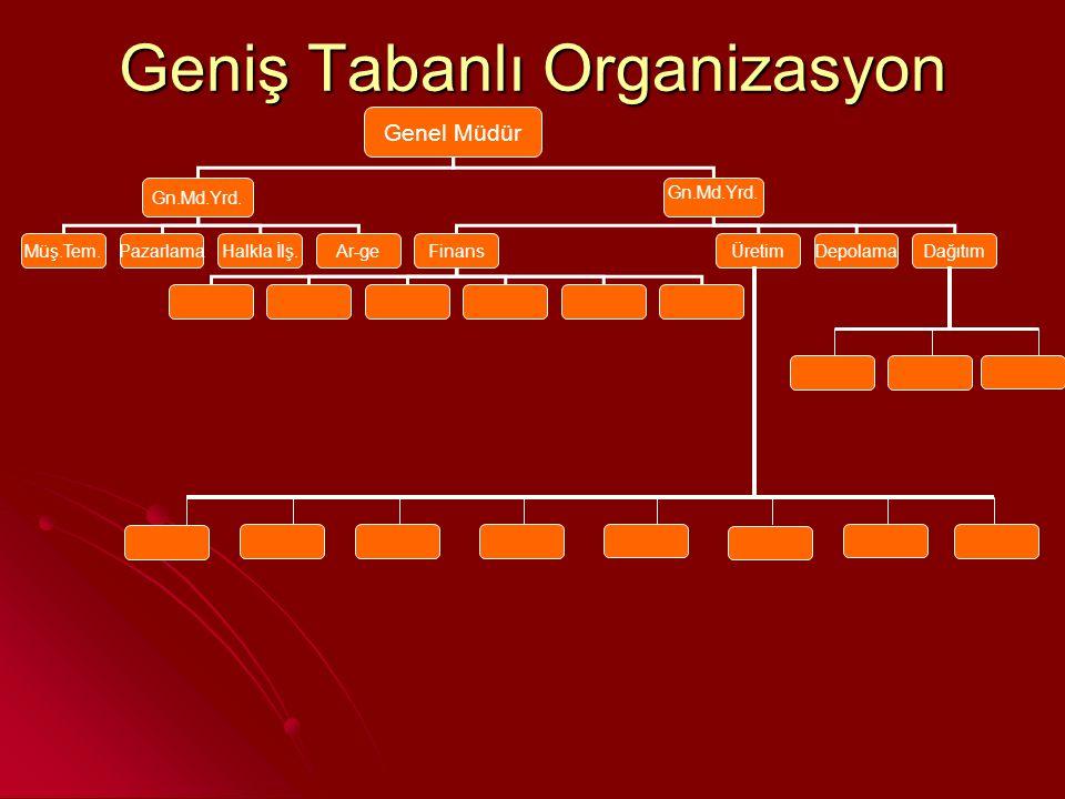 Geniş Tabanlı Organizasyon