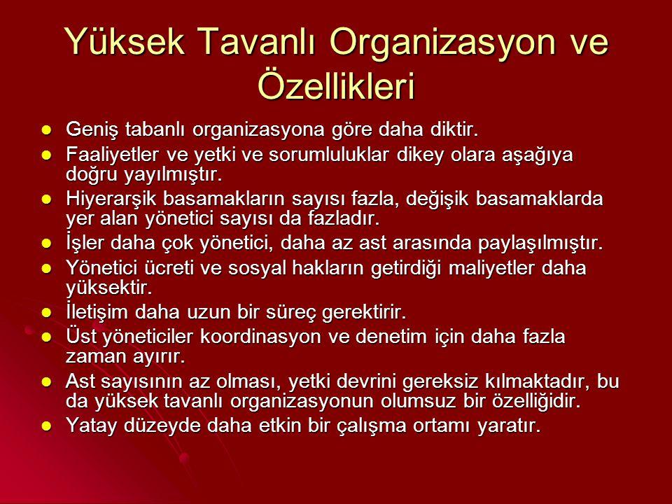 Yüksek Tavanlı Organizasyon ve Özellikleri