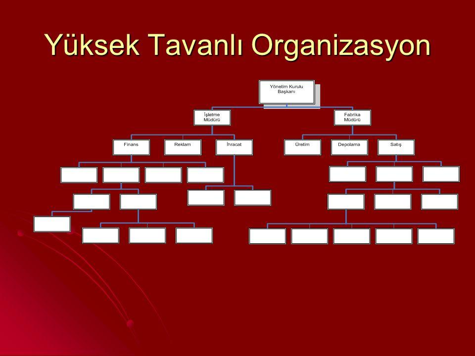 Yüksek Tavanlı Organizasyon