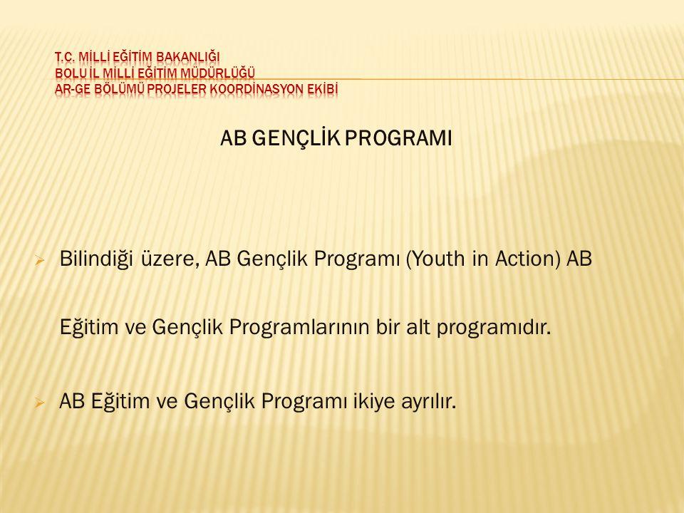 AB Eğitim ve Gençlik Programı ikiye ayrılır.