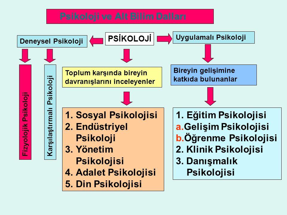 Psikoloji ve Alt Bilim Dalları