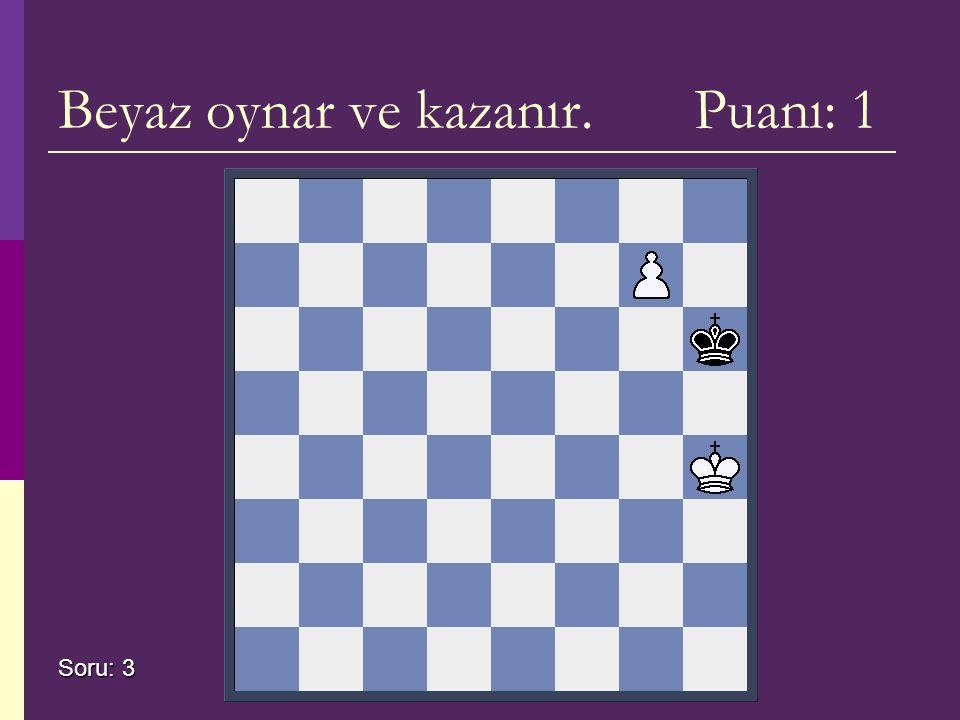 Beyaz oynar ve kazanır. Puanı: 1