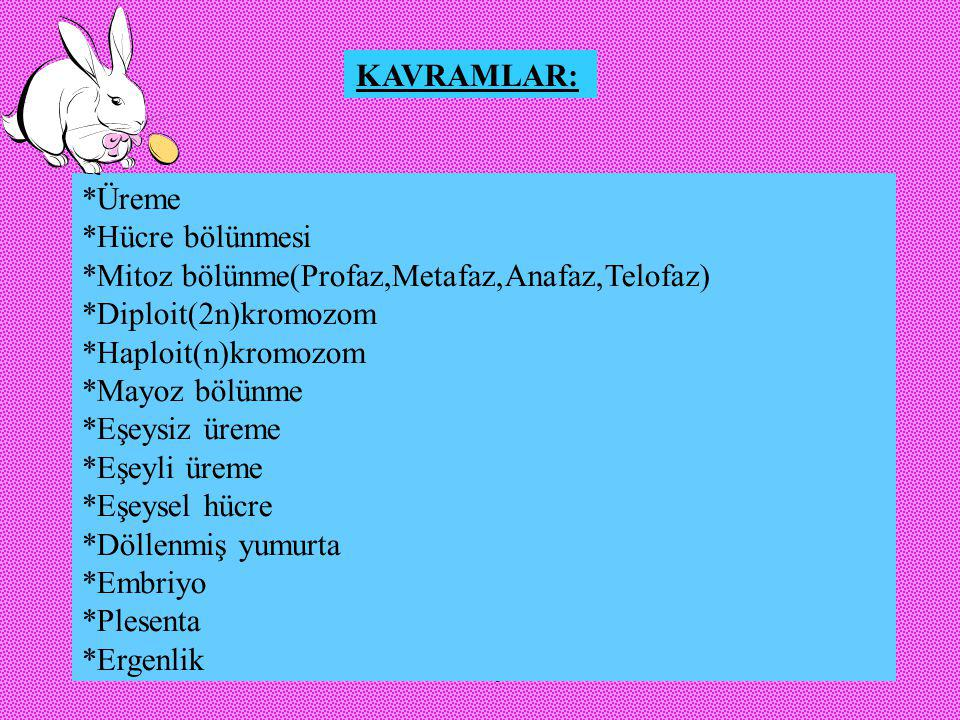 *Mitoz bölünme(Profaz,Metafaz,Anafaz,Telofaz) *Diploit(2n)kromozom