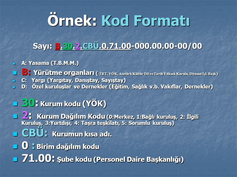 Örnek: Kod Formatı 30: Kurum kodu (YÖK)
