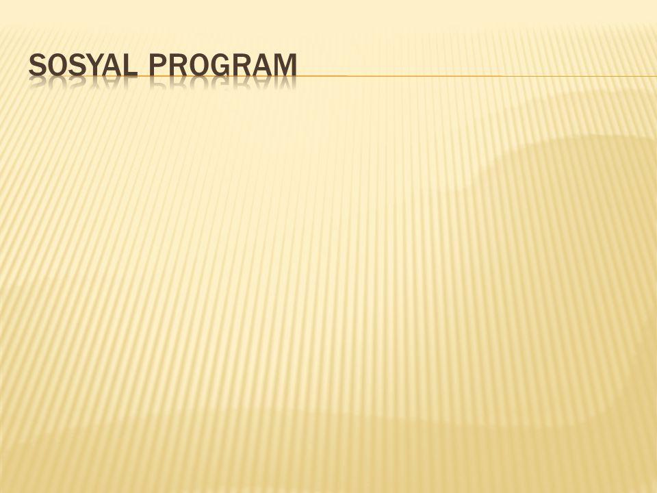 Sosyal program