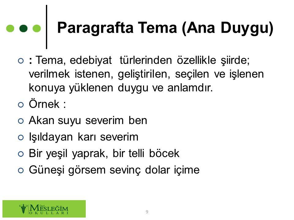 Paragrafta Tema (Ana Duygu)
