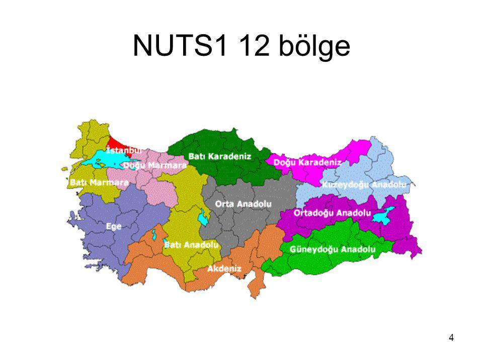 NUTS1 12 bölge