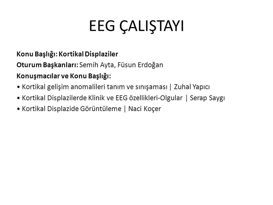 EEG ÇALIŞTAYI