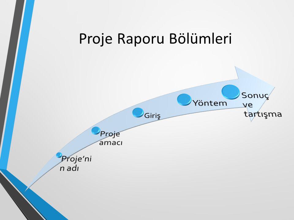 Proje Raporu Bölümleri