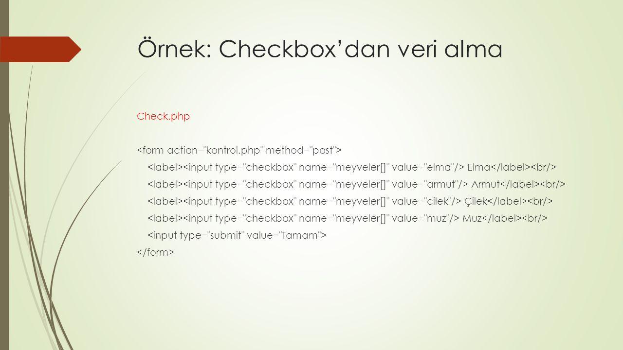 Örnek: Checkbox'dan veri alma