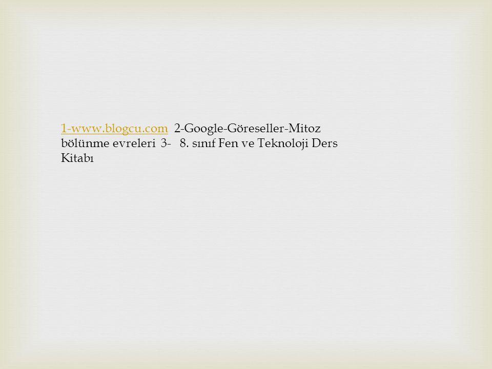 1-www. blogcu. com 2-Google-Göreseller-Mitoz bölünme evreleri 3- 8