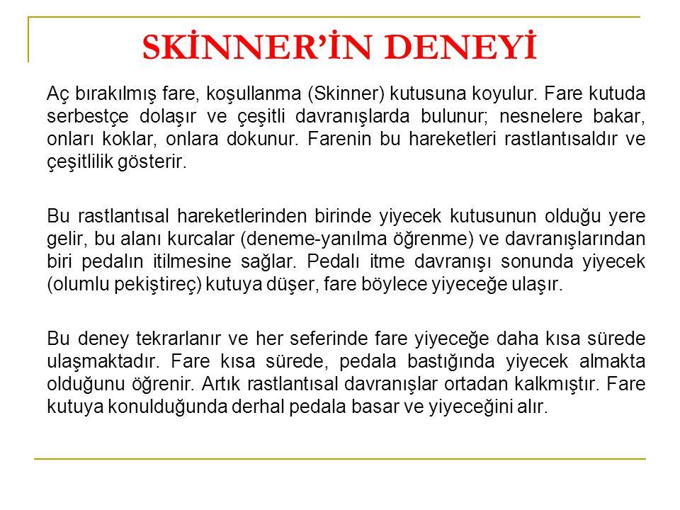 SKİNNER'İN DENEYİ
