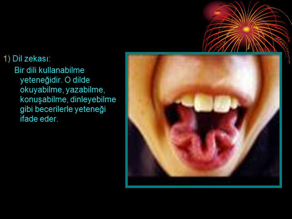 1) Dil zekası: Bir dili kullanabilme yeteneğidir.