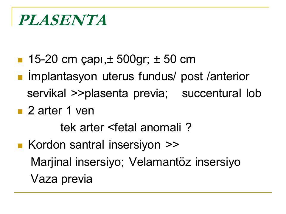 PLASENTA 15-20 cm çapı,± 500gr; ± 50 cm