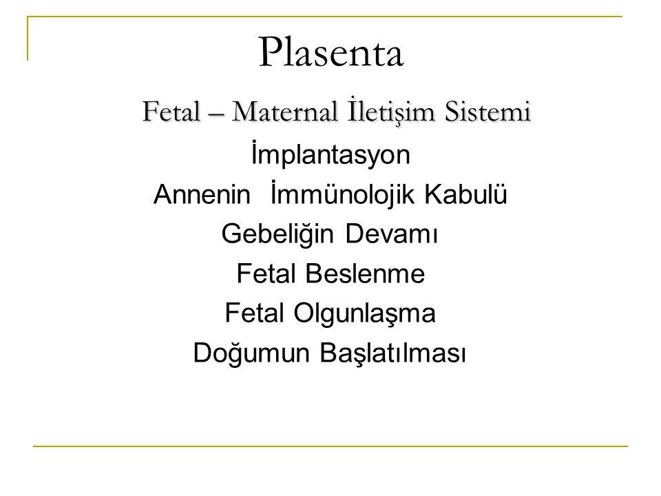 Plasenta Fetal – Maternal İletişim Sistemi