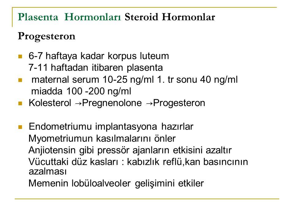 Plasenta Hormonları Steroid Hormonlar Progesteron