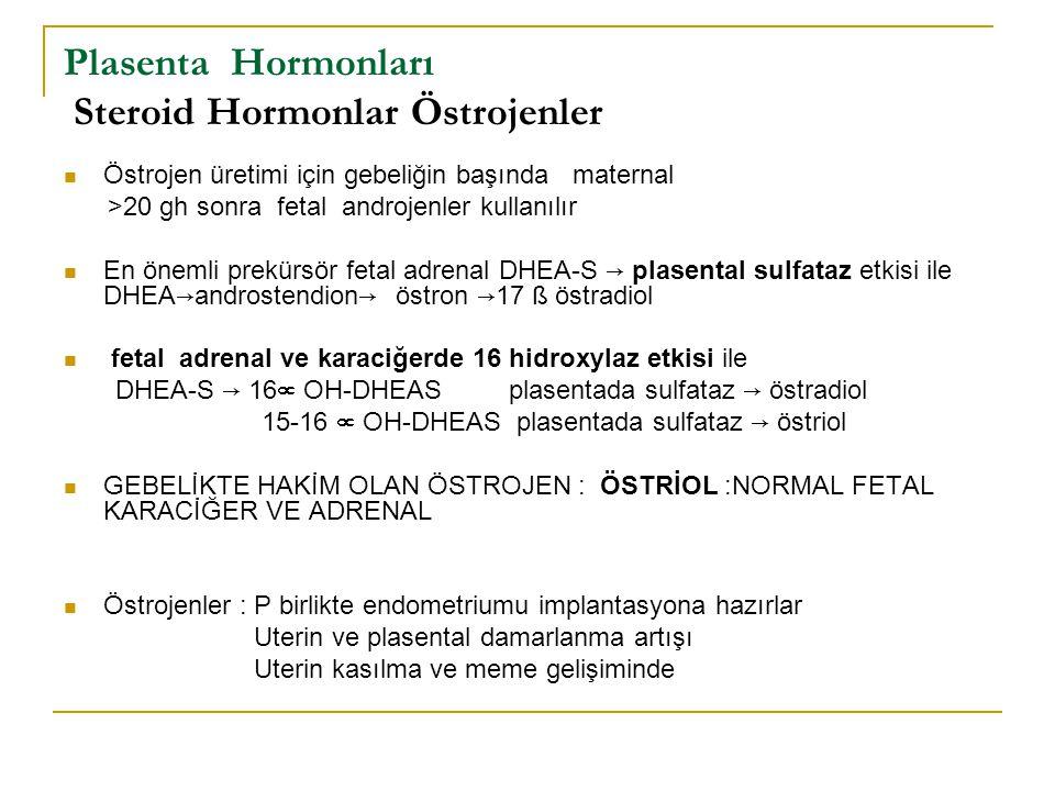 Plasenta Hormonları Steroid Hormonlar Östrojenler