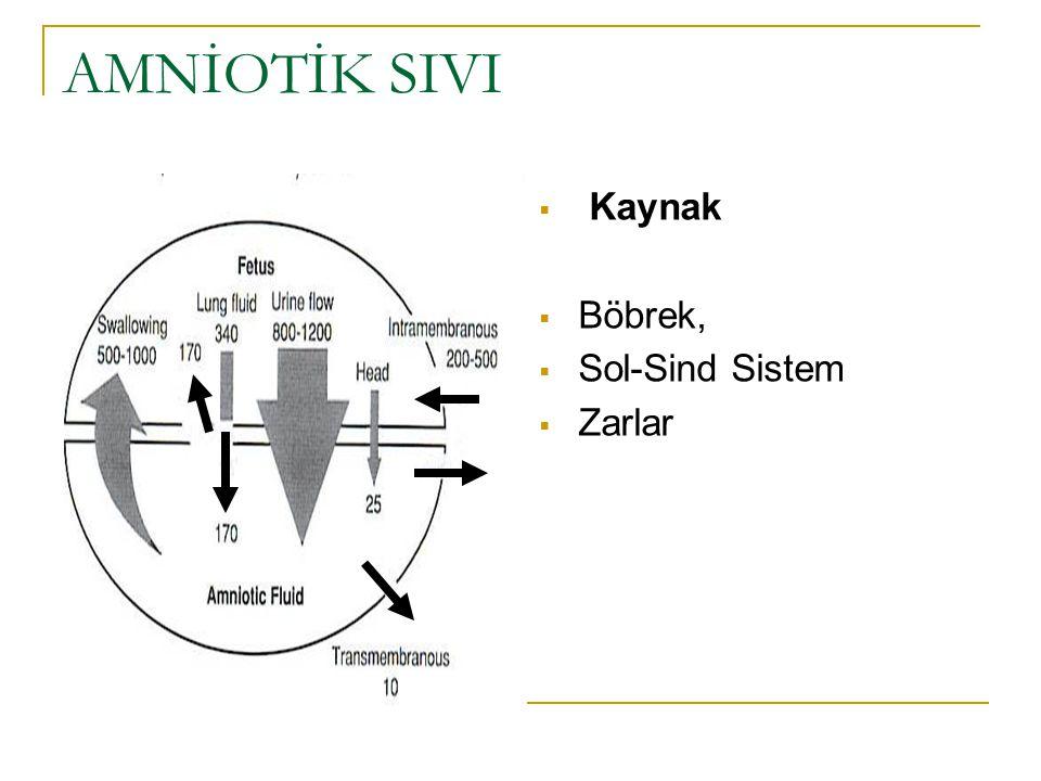 AMNİOTİK SIVI Kaynak Böbrek, Sol-Sind Sistem Zarlar