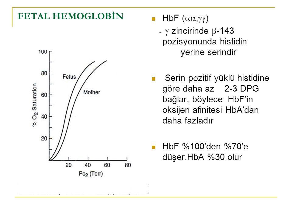 FETAL HEMOGLOBİN HbF (,)