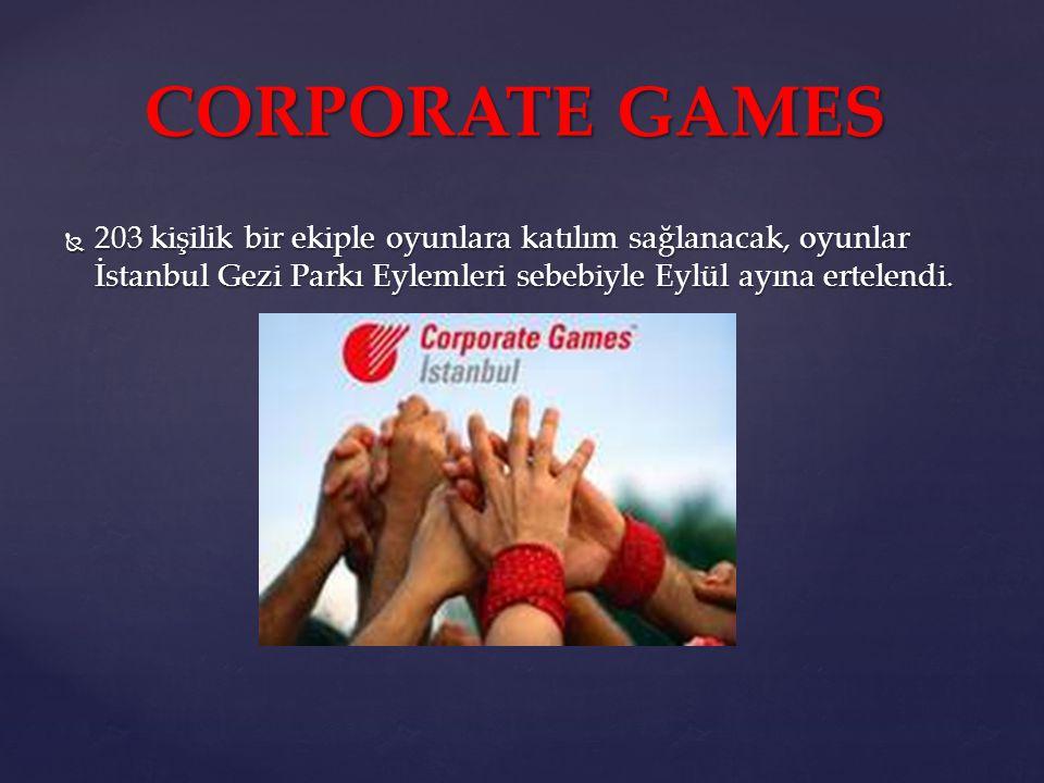 203 kişilik bir ekiple oyunlara katılım sağlanacak, oyunlar İstanbul Gezi Parkı Eylemleri sebebiyle Eylül ayına ertelendi.