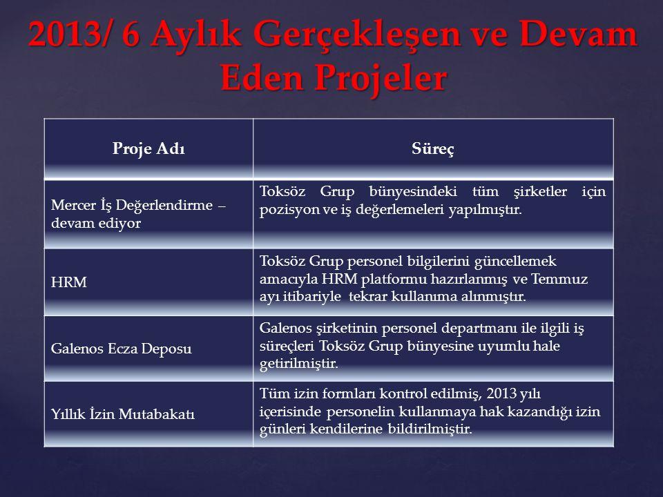 2013/ 6 Aylık Gerçekleşen ve Devam Eden Projeler