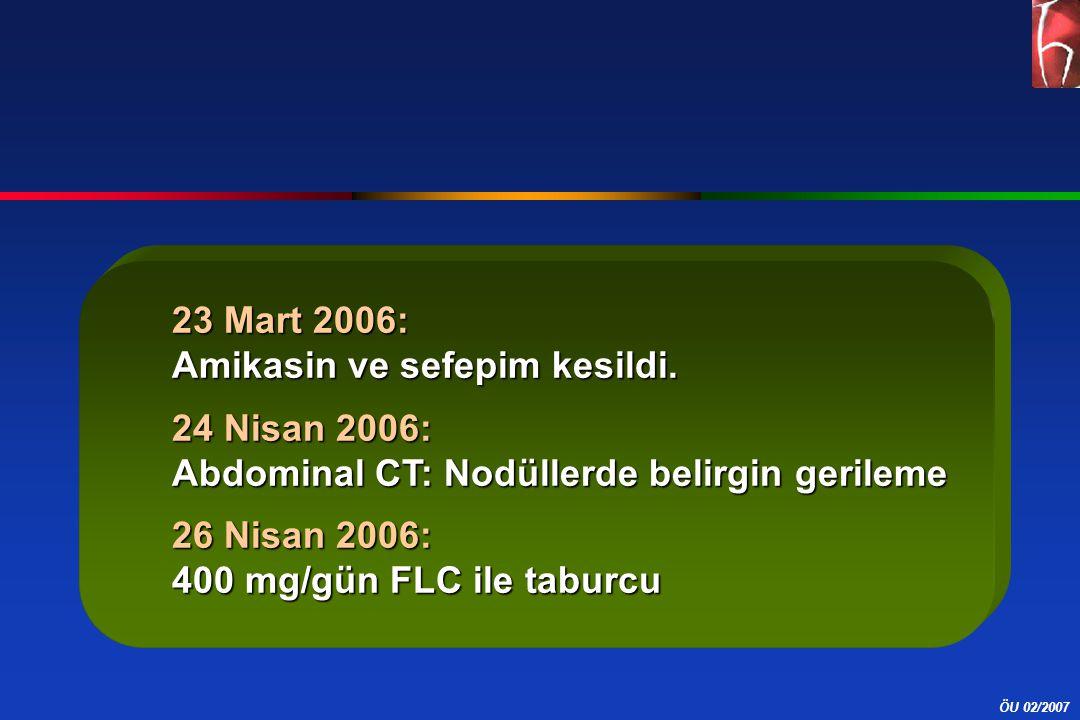 23 Mart 2006: Amikasin ve sefepim kesildi. 24 Nisan 2006: Abdominal CT: Nodüllerde belirgin gerileme.