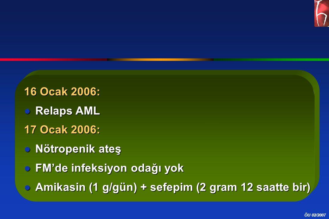16 Ocak 2006: Relaps AML. 17 Ocak 2006: Nötropenik ateş.