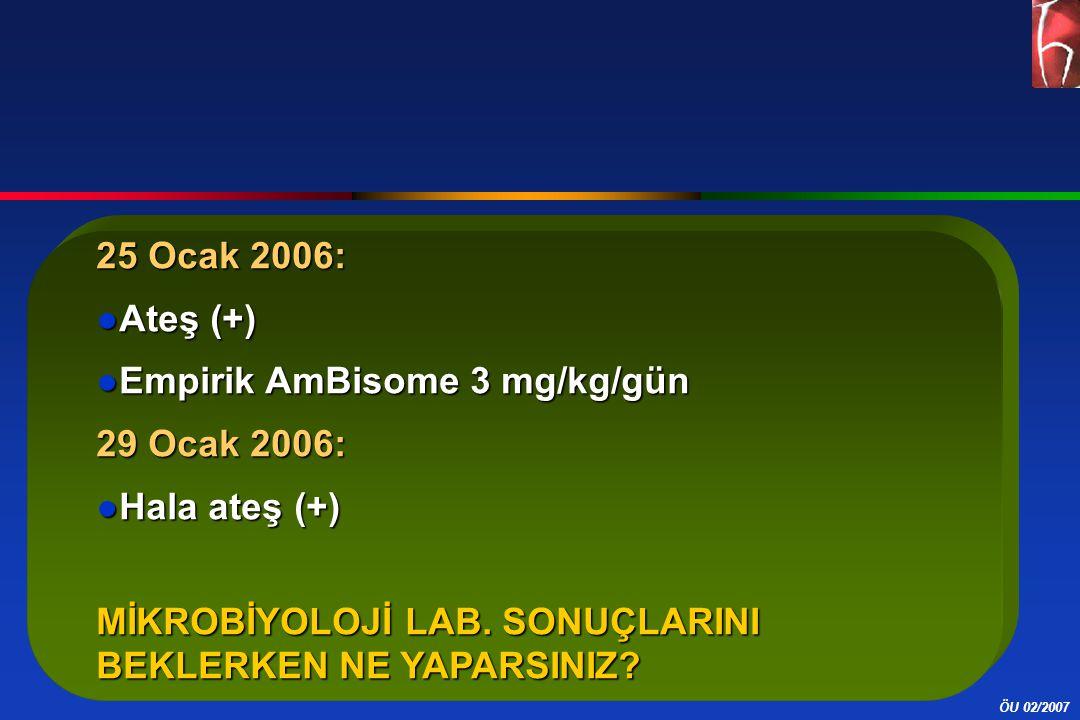 25 Ocak 2006: Ateş (+) Empirik AmBisome 3 mg/kg/gün.