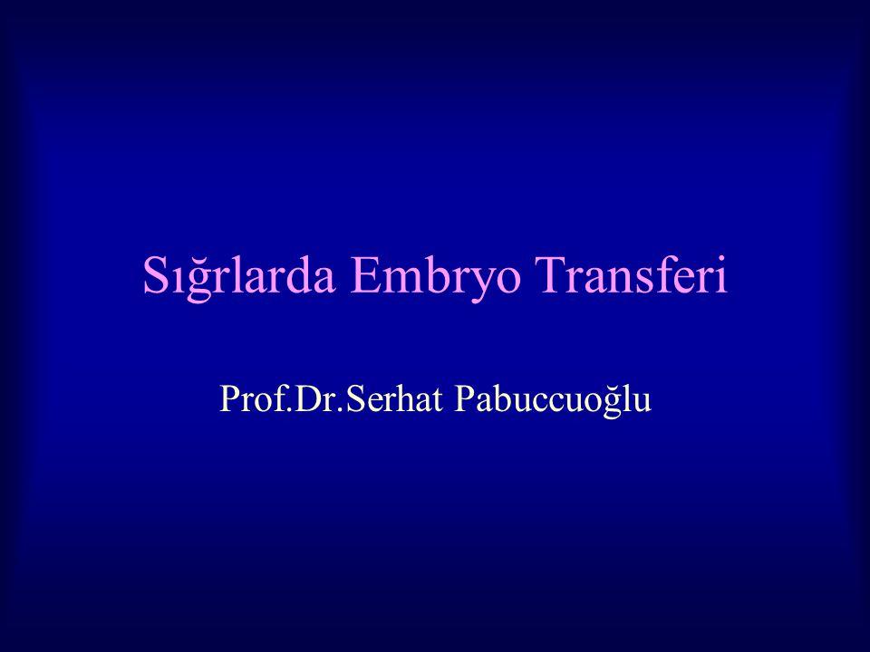Sığrlarda Embryo Transferi