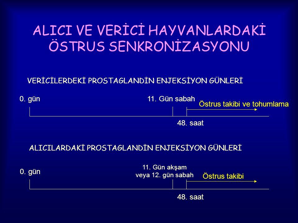 ALICI VE VERİCİ HAYVANLARDAKİ ÖSTRUS SENKRONİZASYONU