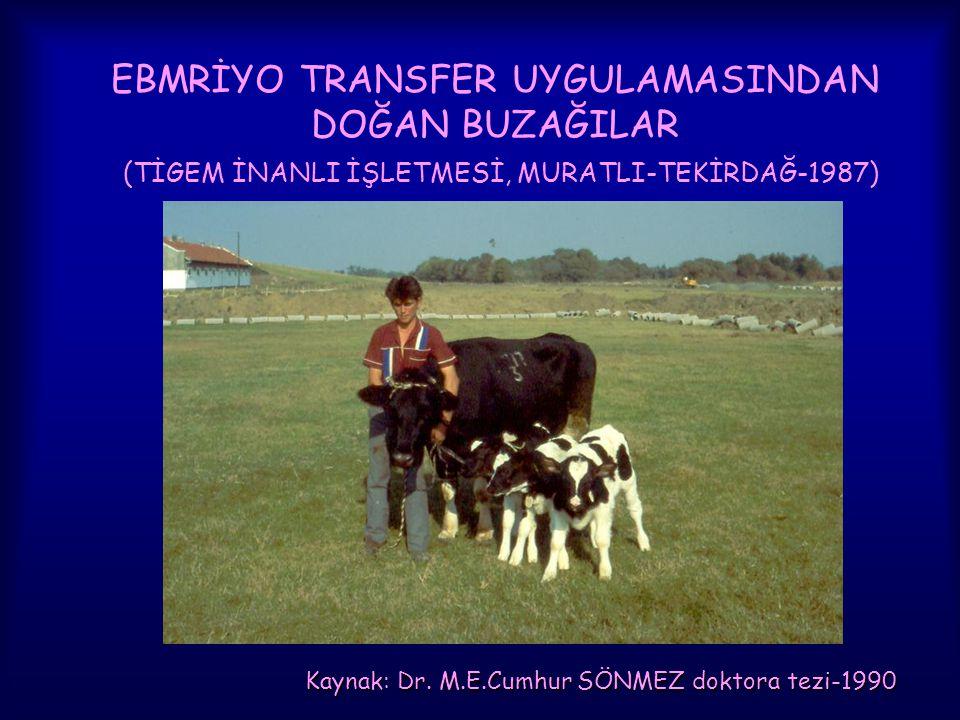Kaynak: Dr. M.E.Cumhur SÖNMEZ doktora tezi-1990