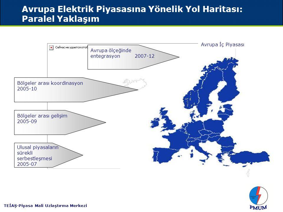 Avrupa Elektrik İç Piyasası için Orta Vadeli Vizyon