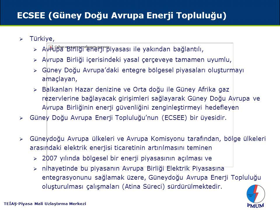 ECSEE (Güney Doğu Avrupa Enerji Topluluğu)