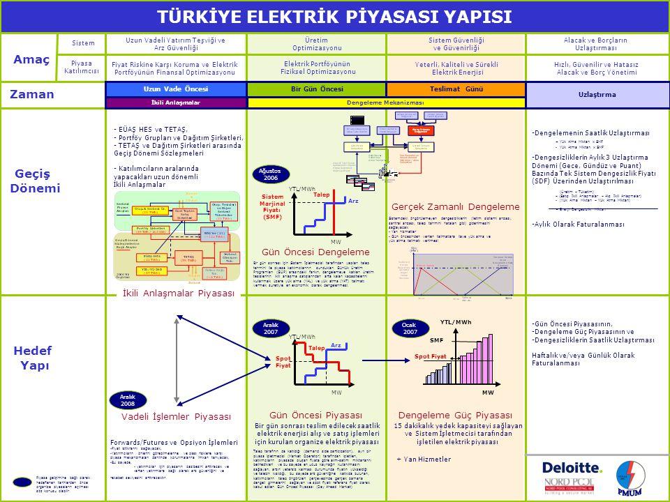 Hedef Piyasa Yapısı Elektrik Enerjisi Ticareti Sistem İşletimi
