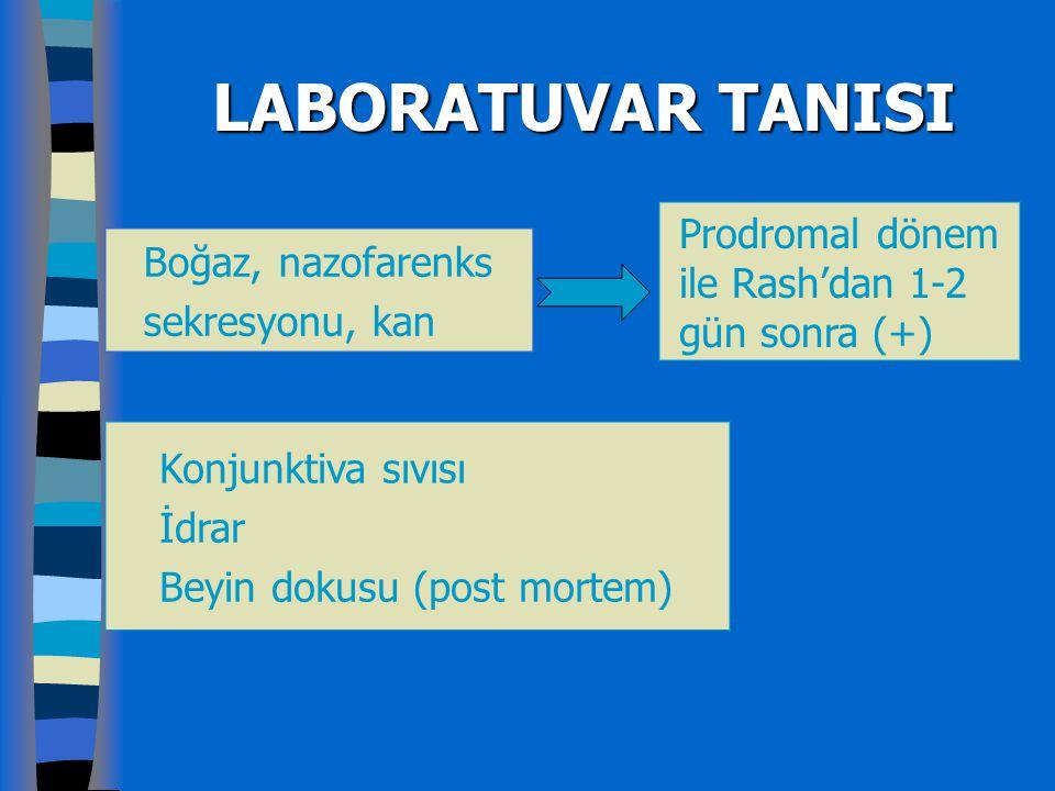 LABORATUVAR TANISI Prodromal dönem ile Rash'dan 1-2 gün sonra (+)