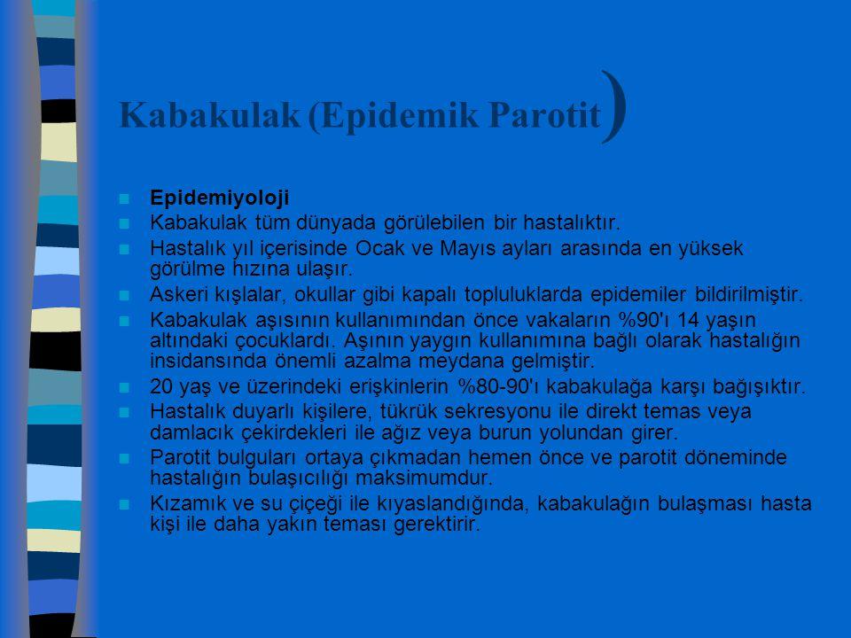 Kabakulak (Epidemik Parotit)