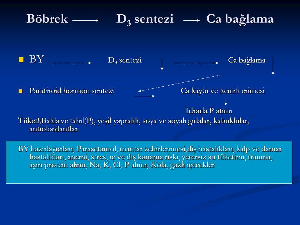 Böbrek D3 sentezi Ca bağlama