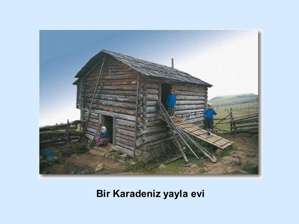 Bir Karadeniz yayla evi