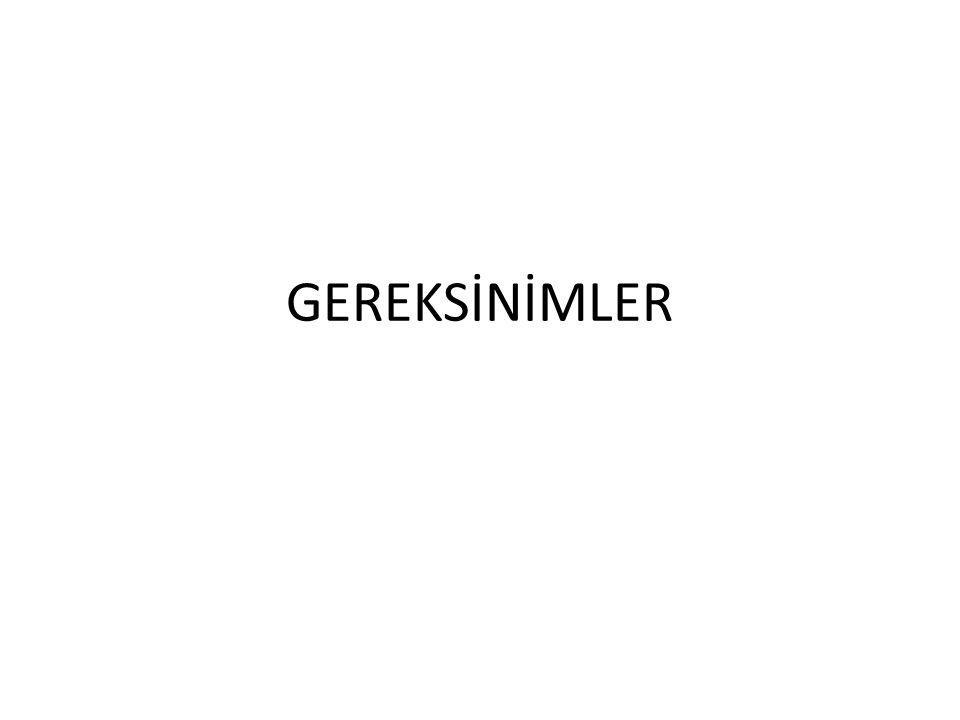 GEREKSİNİMLER