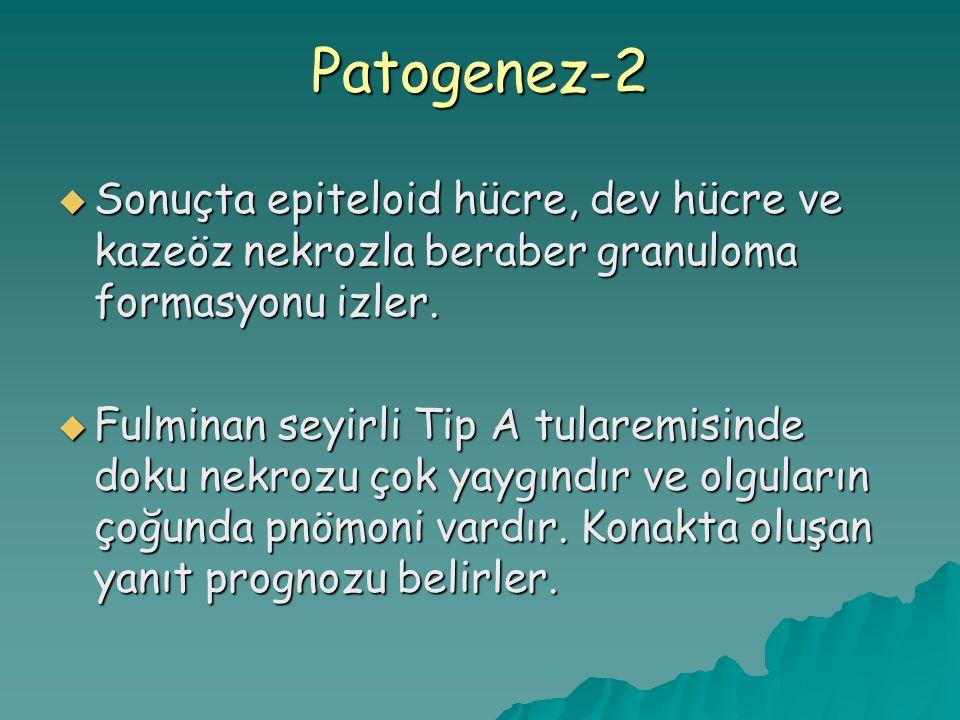 Patogenez-2 Sonuçta epiteloid hücre, dev hücre ve kazeöz nekrozla beraber granuloma formasyonu izler.
