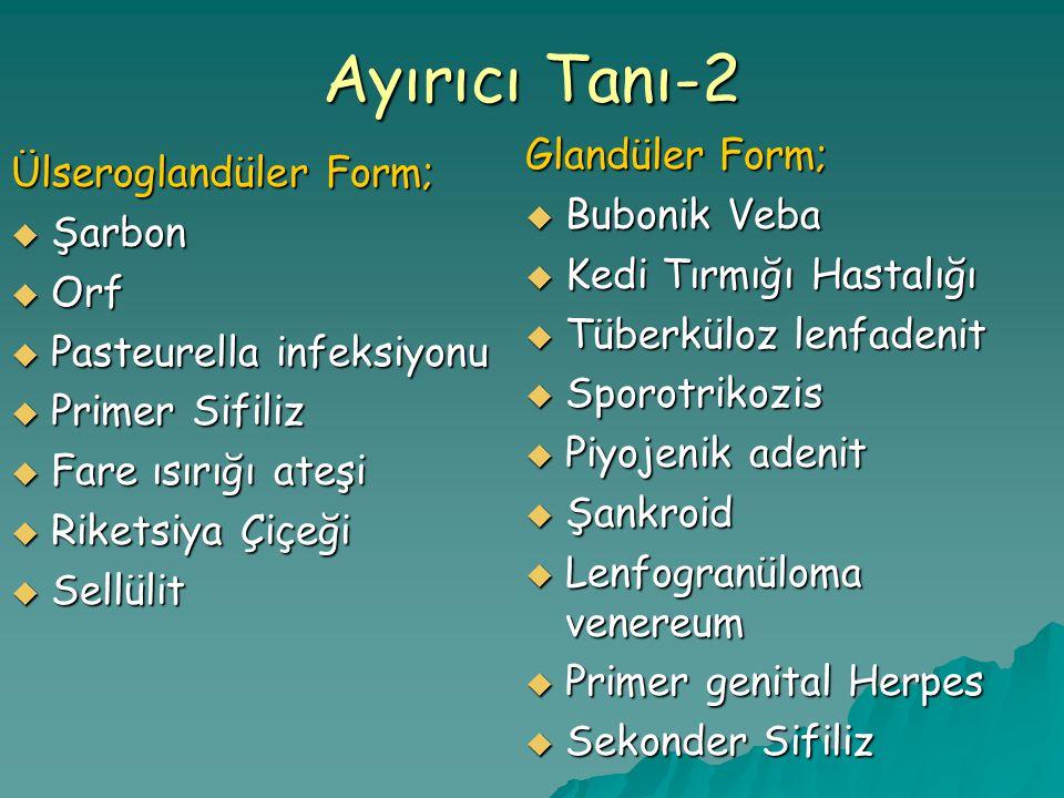 Ayırıcı Tanı-2 Glandüler Form; Ülseroglandüler Form; Bubonik Veba
