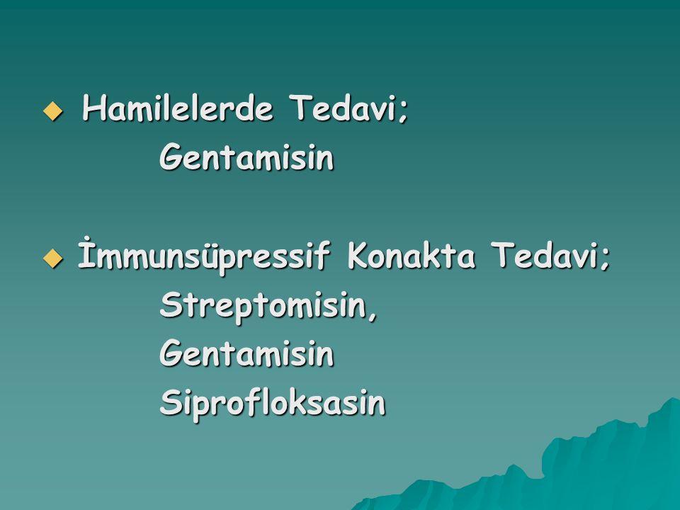 Hamilelerde Tedavi; Gentamisin İmmunsüpressif Konakta Tedavi; Streptomisin, Siprofloksasin