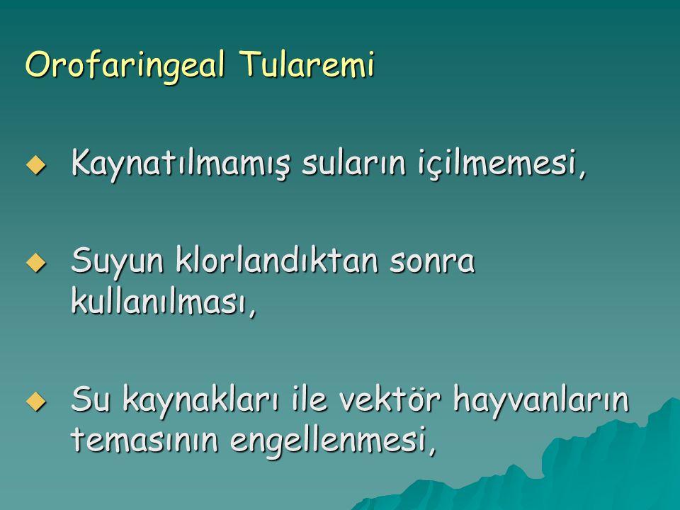 Orofaringeal Tularemi